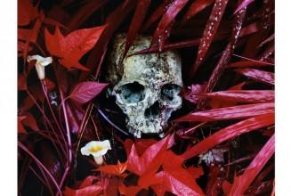Ben Frost &#038; Richard Mosse release <em>The Enclave</em> as limited edition vinyl