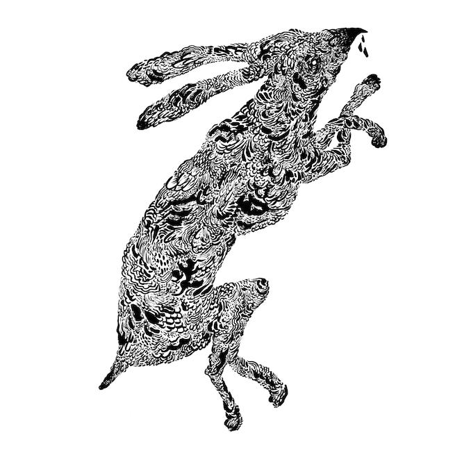 rabbit print copy
