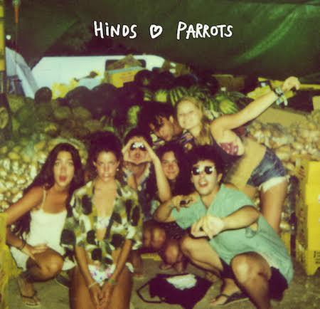 HINDS-3-PARROTS