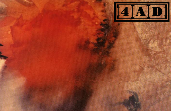 4ad cover image