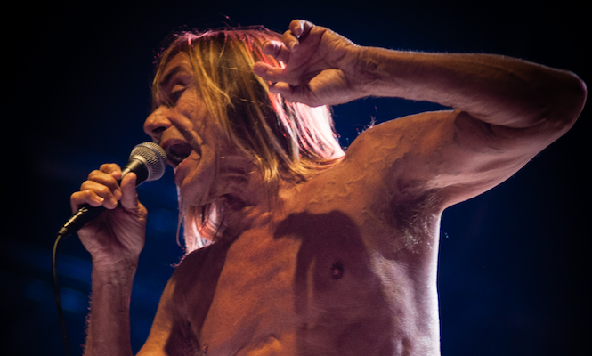 iggy-pop-and-alva-noto-collaborate-on-limited-edition-leaves-of-grass-vinyl